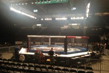 Pete DiLorenzo - The MMA Report