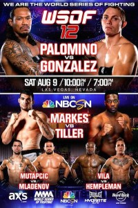 Does anybody want to do an Event Pool for the WSOF 12 event ? WSOF-12-200x300