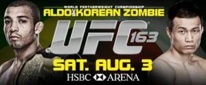 UFC 163 Small