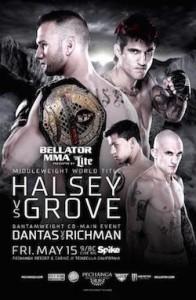 Bellator 137 Poster