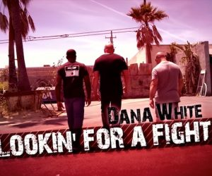 Dana White Lookin For A Fight