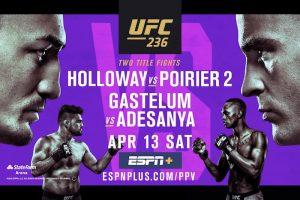 UFC 236